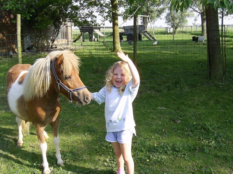 pony-reunie-verjaardagmeme-097